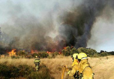 La Junta no apoyó la solicitud para que Cabrera fuera declarada como comarca catastrófica tras el incendio del verano pasado