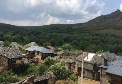 Fantástico Bosque: una iniciativa para repoblar el monte de Valdavido, un pueblo vivo en el que no vive nadie