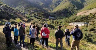 Guerrilla y minería: una mirada desde Casaio